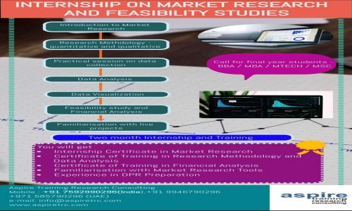 Internship on Market Research and Feasibility Studies